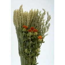 BOUQUET (D)  Orange- OUT OF STOCK