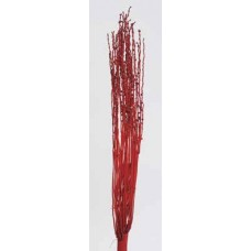 "DATEBERRY CLUMPS Red  40""-44"""