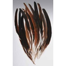 "FEATHERS ROOSTER TAIL Natural 14""-16"""