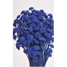 "FLORAL BUTTONS Blue 18"" (BULK)- OUT OF STOCK"