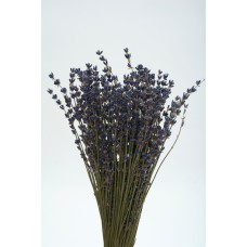 LAVENDER FRENCH Natural 11'-15""