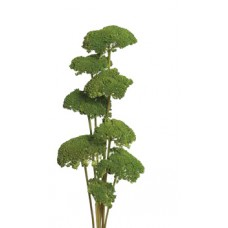 "YARROW Moss 22""  - OUT OF STOCK"