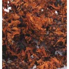 MOSS BLACK LICHEN Burnt Oak (HEADER)