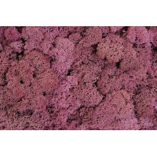 REINDEER MOSS 3 lb  DUSTY ROSE  (BULK)