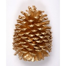 "JEFFREY PINE CONE 5""-7"" GOLD"