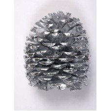 "JEFFREY PINE CONE 5""-7"" (STAKED) SILVER"