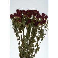 "ROSE SPRAY  22"" Red"