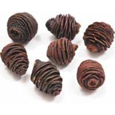 SPIRAL CONES HEADS Natural (BULK)